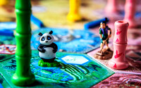 41 Takenoko color